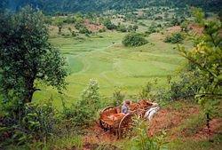Shan Landscape